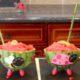 Watermelon Slushy Bowls
