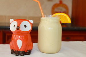 tn orange coconut smoothie with fox