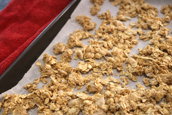 granola snack on tray