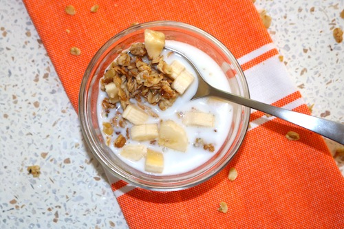 healthy granola recipe with milk