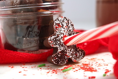 tn gingerbread shaped candy cane cocoa recipe