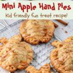 mini apple hand pies pin